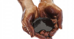 Bertemu Jokowi, Petinggi Chevron Ingin Lanjutkan Investasi di Indonesia