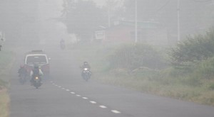 kabut-asap-di-palembang-makin-pekat-1V3QJfMOHV