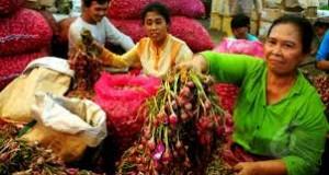 Bawang Merah Rp40 Ribu per Kg, Harga Cabai Turun