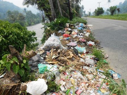 Daerah Aliran Sungai (DAS) Batang Gadis diseputaran Aek Siapi-api, desa Saba Dolok Kec. Kotanopan Kab. Mandailing Natal menjadi tempat pembuangan sampah