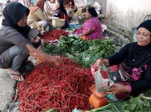 Terlihat pedagang cabai merah di Kecamatan Panyabungan ketika melayani pembeli harganya makin pedas.