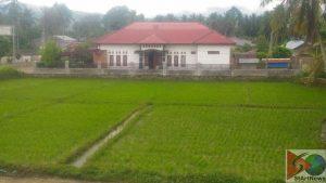 Lahan Persawahan di Huta Siantar yang sudah beralih fungsi menjadi pemukiman penduduk.