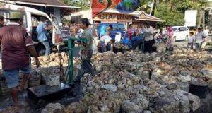Harga Karet Alam di Madina Tembus Rp.12.000/Kg