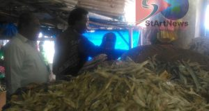 Dahlan Hasan Belanja Ikan Asin di Pasar Baru Panyabungan