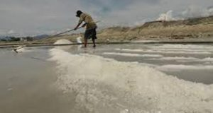 Nelayan Pantai Barat Madina Tidak Mampu Beli Garam