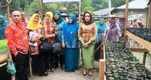 Tim Monitoring Sumatera Utara Kunjungi Desa Binaan