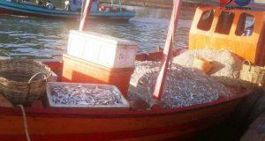 Nelayan Pantai Barat Mengeluh Pelarangan Pakai Pukar Centrang