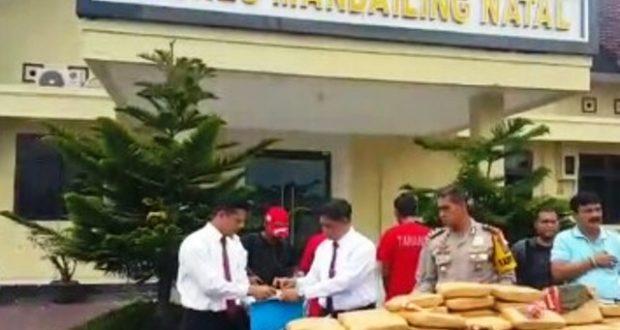 Polisi Amankan 82 Bal Ganja Siap Edar Beserta 3 Tersangka