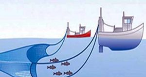 Ini Ketentuan Bagi Nelayan dalam Kesepakatan Penggunaan Cantrang