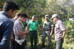 Aktivitas Dugaan Harimau di Kecamatan Tambangan Makin Meluas