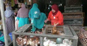 Jelang Ramadhan Harga Ayam Potong Naik