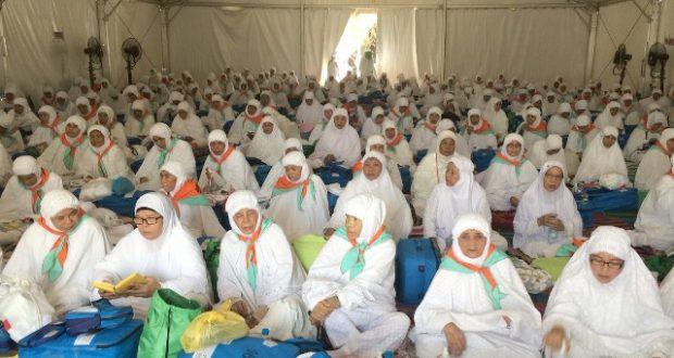 Arafah Diterjang Badai Pasir Jemaah Madina Gelar Zikir dan Doa