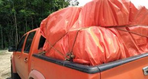 Hari Ini BPBD Madina Berangkatkan Bantuan Logistik Korban Banjir di Batang Natal