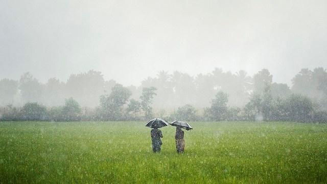 Petani Meminta Hujan
