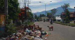 Warga Keluhkan Sampah Berserakan di Pinggir Jalan