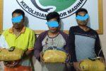 Tiga Pria Pemilik 3.300 gram Ganja Kering Ditangkap di Tempat Berbeda