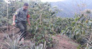 Keteladanan Babinsa Kecamatan Ulu Pungkut
