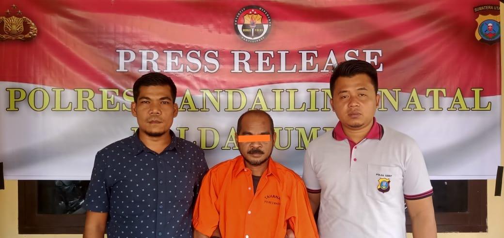 3 Orang Warga Madina Pelaku Judi Togel Diamankan Polisi