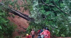 Longsor Menimpa Badan Jalan Provinsi, Lalin Panyabungan – Simpanggambir Putus Total