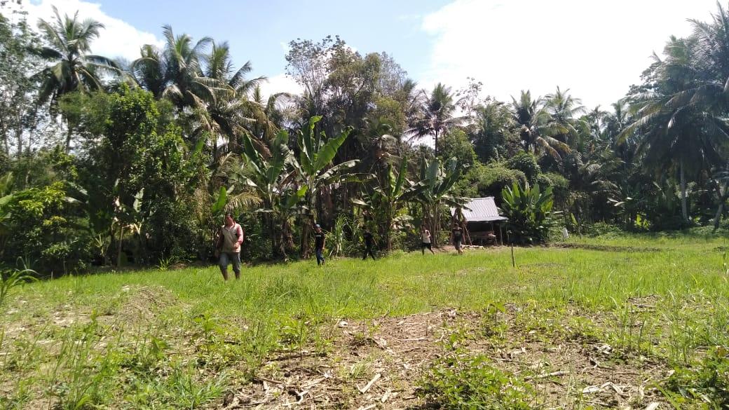 Kadis Pertanaian Tinjau Lokasi Banjir di Persawahan Warga Kelurahan Mompang