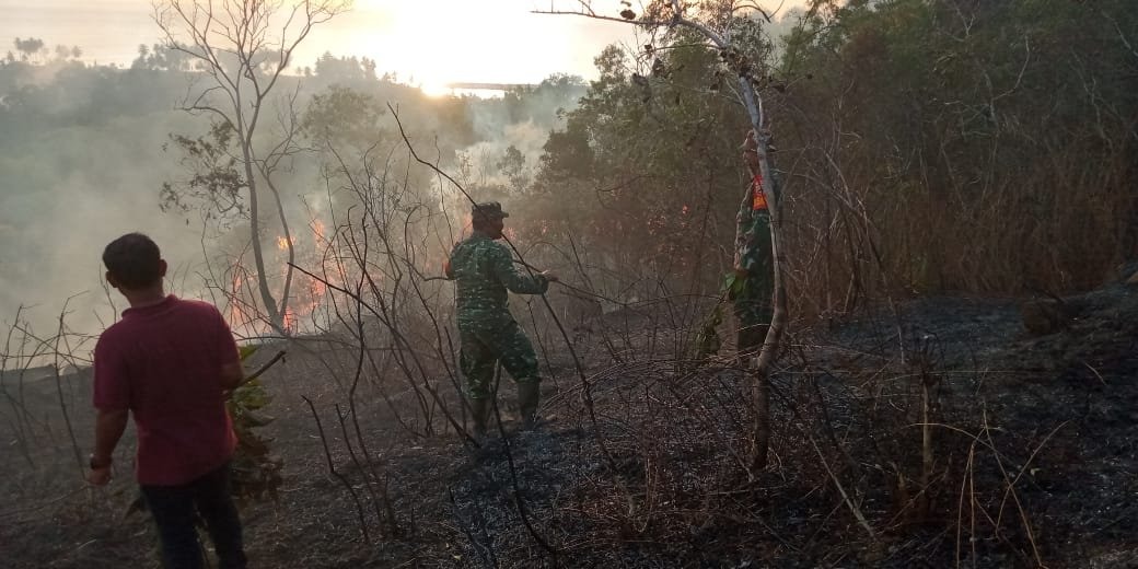 Hari Ini, Ada Dua Titik Kebakaran Hutan di Pantai Barat Madina