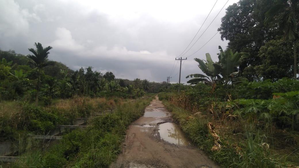 Jalan Penghubung Huta Bargot ke Desa Runding Rusak, Butuh Perhatian Pemerintah