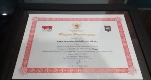 Pemkab Madina Menerima Penghargaan LPPD