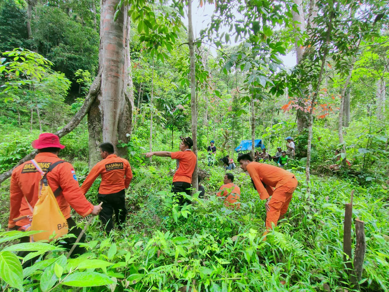 BPBD Terus Lakukan Pencarian Orang Hilang di Dalam Hutan