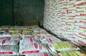 Pemkab Madina Berupaya Urai Masalah Distribusi Pupuk Subsidi untuk Petani